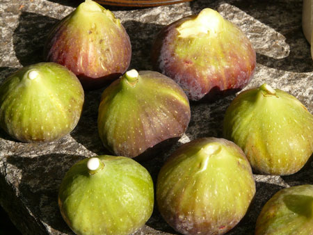 Beauty Benefits of Figs